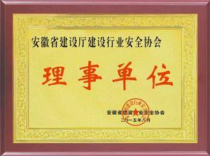 安徽省住建厅安全协会理事单位