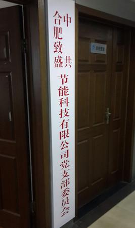 中共合肥致盛党支部委员会挂牌